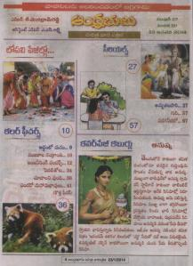 a bhumi(23  jan 14) contents