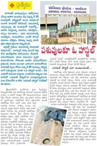 animal hostel adivaram 1